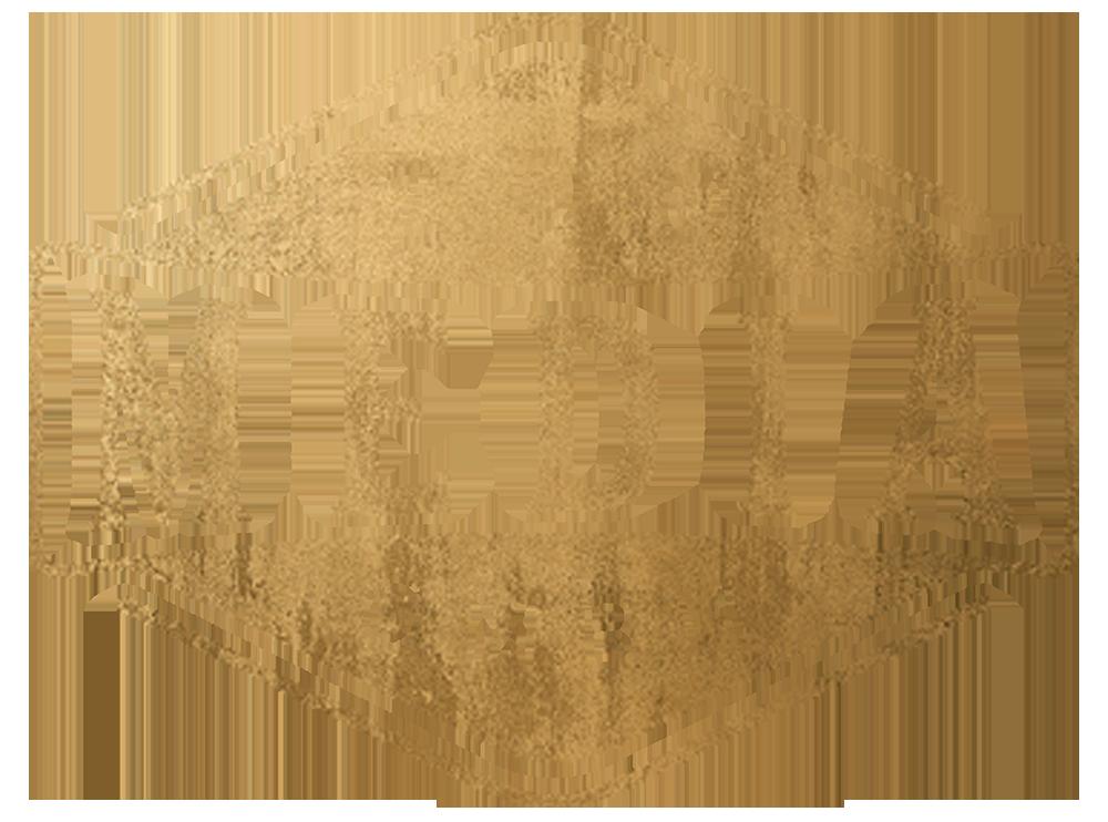 Zoo Media GmbH